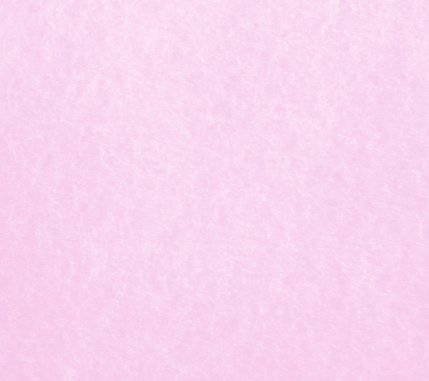 Plain Baby Pink Wallpaper: Plain Pastel Pink Background
